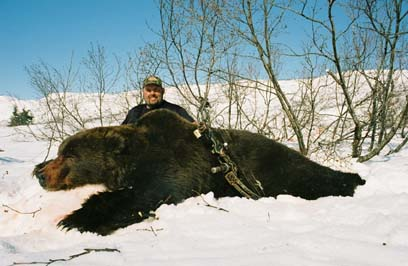 roy-4-12-2007-brown-bear.jpg